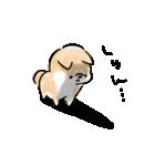 日常会話をする犬+(個別スタンプ:26)