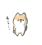 日常会話をする犬+(個別スタンプ:36)