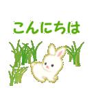 赤ちゃんウサギ 毎日使う言葉(個別スタンプ:2)