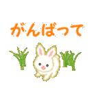 赤ちゃんウサギ 毎日使う言葉(個別スタンプ:23)