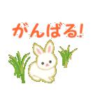 赤ちゃんウサギ 毎日使う言葉(個別スタンプ:24)