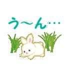 赤ちゃんウサギ 毎日使う言葉(個別スタンプ:34)