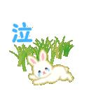 赤ちゃんウサギ 毎日使う言葉(個別スタンプ:35)