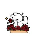 すこぶる動くウサギ【感情爆発!】(個別スタンプ:8)