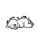 すこぶる動くウサギ【感情爆発!】(個別スタンプ:13)