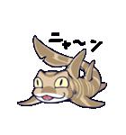 いろんなサメ(個別スタンプ:01)