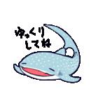 いろんなサメ(個別スタンプ:03)
