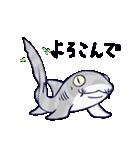 いろんなサメ(個別スタンプ:10)