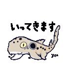 いろんなサメ(個別スタンプ:13)