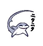 いろんなサメ(個別スタンプ:21)