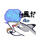 いろんなサメ(個別スタンプ:24)