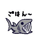いろんなサメ(個別スタンプ:29)