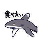 いろんなサメ(個別スタンプ:30)