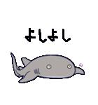 いろんなサメ(個別スタンプ:38)