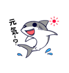 いろんなサメ(個別スタンプ:40)