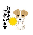 愛犬家の毎日スタンプジャックラッセルcute(個別スタンプ:01)
