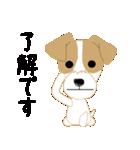 愛犬家の毎日スタンプジャックラッセルcute(個別スタンプ:02)