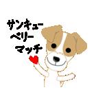 愛犬家の毎日スタンプジャックラッセルcute(個別スタンプ:03)