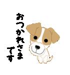 愛犬家の毎日スタンプジャックラッセルcute(個別スタンプ:05)
