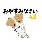 愛犬家の毎日スタンプジャックラッセルcute(個別スタンプ:06)