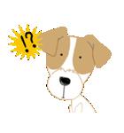 愛犬家の毎日スタンプジャックラッセルcute(個別スタンプ:12)
