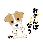 愛犬家の毎日スタンプジャックラッセルcute(個別スタンプ:14)