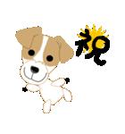 愛犬家の毎日スタンプジャックラッセルcute(個別スタンプ:20)