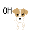 愛犬家の毎日スタンプジャックラッセルcute(個別スタンプ:25)