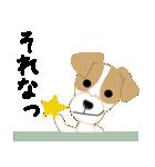 愛犬家の毎日スタンプジャックラッセルcute(個別スタンプ:26)