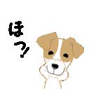 愛犬家の毎日スタンプジャックラッセルcute(個別スタンプ:30)