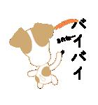 愛犬家の毎日スタンプジャックラッセルcute(個別スタンプ:40)