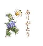 毎日使えるスタンプ!ほんわかさんと花達(個別スタンプ:08)