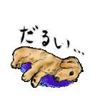 可愛い水墨画風ダックス(個別スタンプ:40)