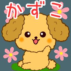 トイプーちゃんの日常【かずこ編】