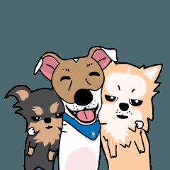 ぷよジャックラッセルテリア犬と家族