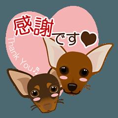まめぴん321*Ginoくん&Lenneくんver.2