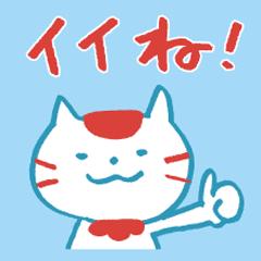 ひのまる猫2019