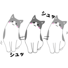派手すぎない癒しの猫スタンプ