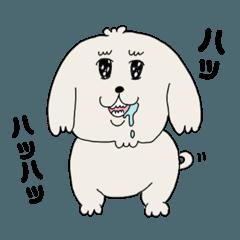 [LINEスタンプ] 愛すべきpokoちゃん (1)