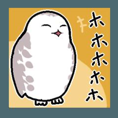 無難なトリさんのスタンプ-シロフクロウ編-