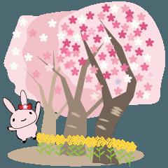 ハピーの春!
