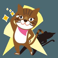 キジトラ猫の小梅ちゃん