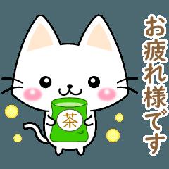 白ネコちゃんの日常会話