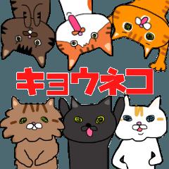 [LINEスタンプ] キョウさんちのネコたち (1)