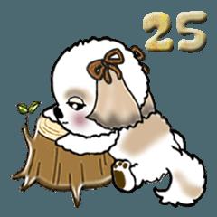 シーズー犬(だぞ!編) Vol.25
