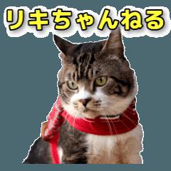 【YouTube】リキちゃんねる実写スタンプ①
