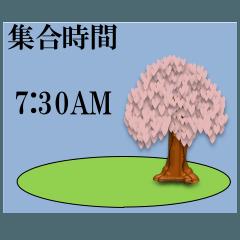 集合時間/桜
