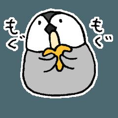 野球とバナナが好きなペンギン(No.225)