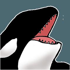 海洋生物が好きな人のためのスタンプ