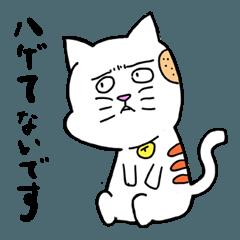 白猫のぽちお